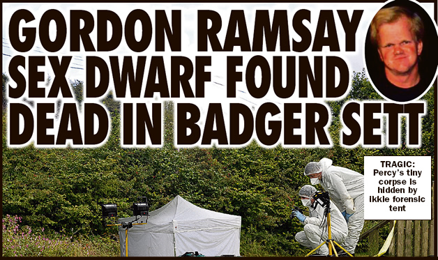 ramsey-dwarf-badger